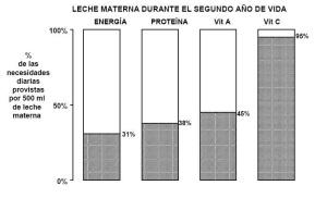 composición de la leche materna en el segundo año