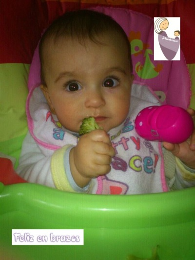 7 meses, brócoli
